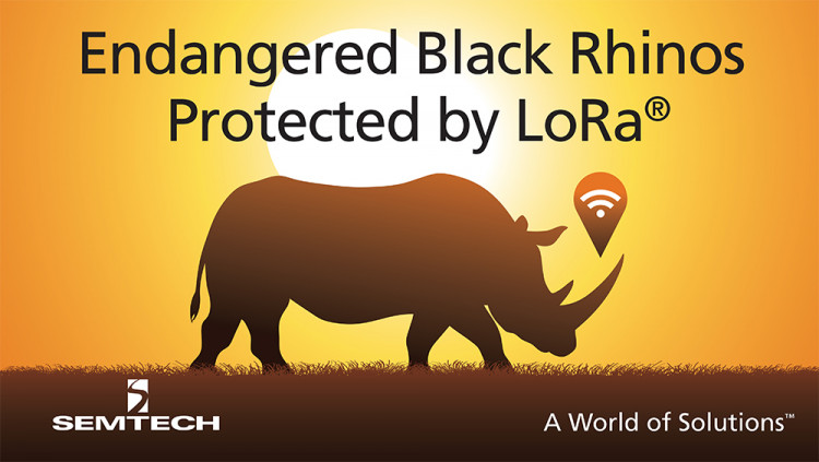 Semtech LoRa Technology Tracks Location of Endangered Black Rhinos in Africa The Internet of Life organization deploys LoRaWAN IoT network to monitor endangered species and improve operations at Mkomazi National Park in Tanzania