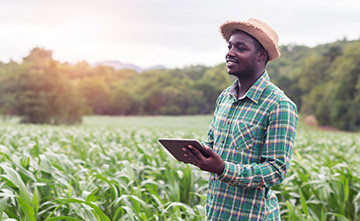 LoRa smart agriculture applications, use cases and resources