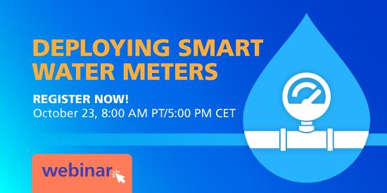 Birdz Smart Water Metering Webinar
